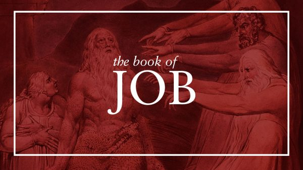 Job: Suffering According to the Will of God Image